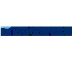 transperfect-logo